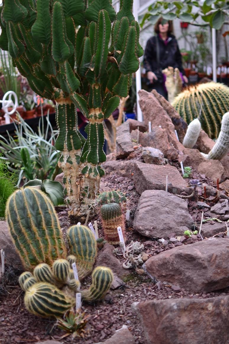 Smith College Botanical Garden